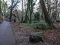 Bushy Park, Dublin -146431 (45565113755).jpg