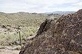 Butcher Jones Trail to Pinter's Point Loop, Tonto National Park, Saguaro Lake, Ft. McDowell, AZ - panoramio (41).jpg