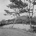 COLLECTIE TROPENMUSEUM Dorpsgezicht met rivier en berg TMnr 10028477.jpg