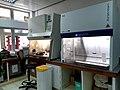 COVID-19 Equipment to Seychelles (05890170).jpg