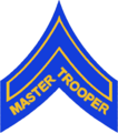 CO - SP Master Trooper Stripes.png