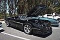 Camaro III (33).jpg