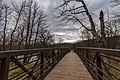 Camden State Park, Minnesota Bridge on Redwood River (37860841311).jpg