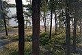 Camp Red Rock, Rennie (400089) (9617303319).jpg