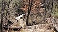 Canyon Ridge Trail Footbridge.jpg
