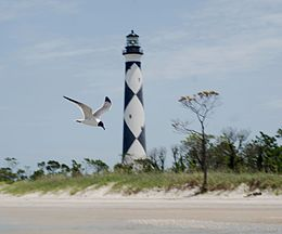 Cape Lookout Lighthouse - 2013-06 - 10.JPG