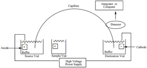 Capillary electrophoresis - Figure 1: Diagram of capillary electrophoresis system
