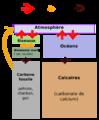 Carbone flux2.png