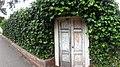 Carmel ivy wall - panoramio.jpg