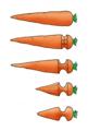 Carrot butt plug.png