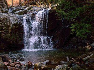 Elaine Hamilton-O'Neal - Cascade Falls Trail, Patapsco Valley State Park