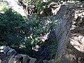 Castell de Requesens 2011 29.jpg