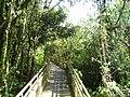 Cataratas del Iguazú - panoramio (11).jpg