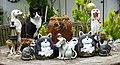 Cats (35241979612).jpg