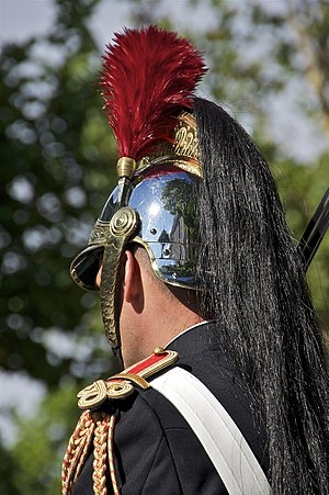 Plume (feather) - A plumed helmet