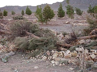 Persecution of Bahá'ís - The Bahá'í cemetery in Yazd