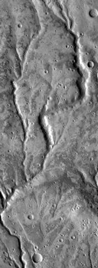 Valley network - Part of a valley network near Warrego Valles, seen by THEMIS. Length of image is roughly 50 km.