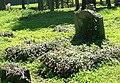 Chełmsko Śląskie, cmentarz parafialny DSCF1694.jpg
