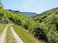 Chemin de Stevenson - panoramio (10).jpg