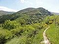 Chemin de Stevenson - panoramio (9).jpg