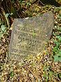 Chenstochov ------- Jewish Cemetery of Czestochowa ------- 183.JPG