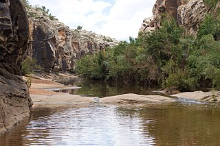 Chevelon Creek river in the United States of America