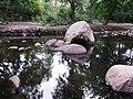 Chinnar River @ Chinnar Wildlife Sanctuary - panoramio (2).jpg