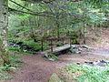 Chipal-La Morthe-780 m (1).jpg