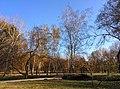 Chisinau dendrarium - autumn trees and small bridge.jpg