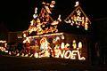 Christmas lights (2).jpg