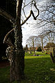 Church of the Holy Cross Felsted Essex England - churchyard at south.jpg