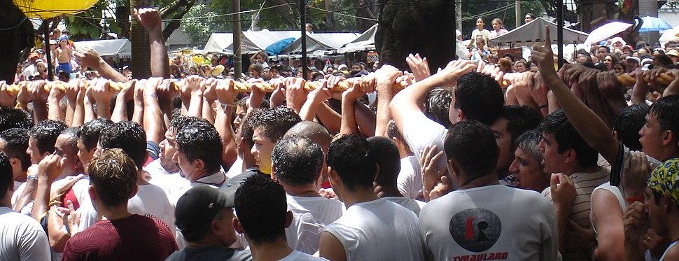 Cirio 2006 corda 1