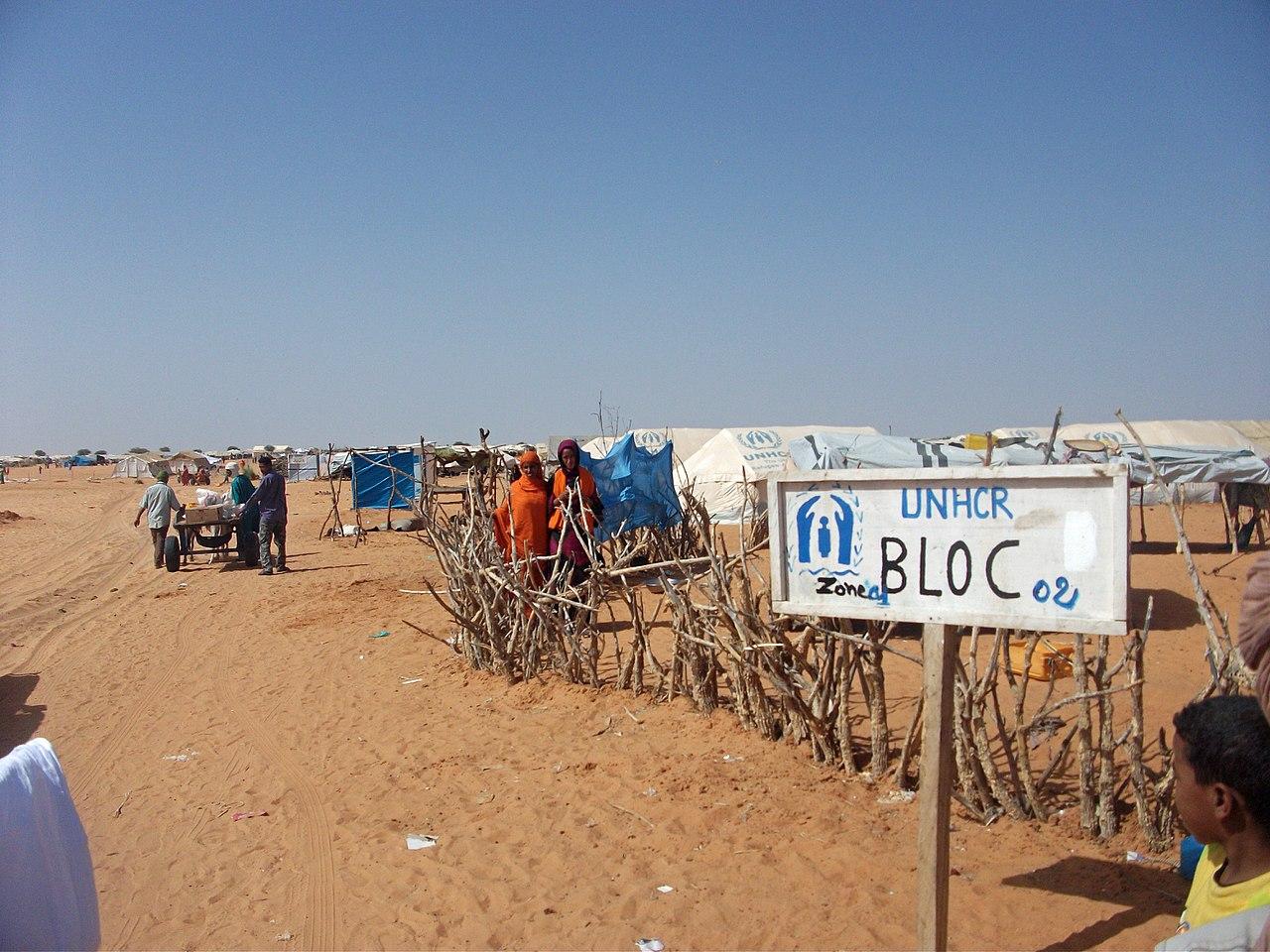 Civilians caught between Mali terrorists, troops - المدنيون محاصرون بين الإرهابيين والجيش في مالي - Des civils pris entre les terroristes et l'armée au Mali (8492052285).jpg