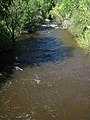 Clear Creek (Buffalo, Wyoming, USA) (1 June 2017) 1 (34201845464).jpg