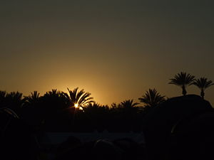 Sunset at Coachella..