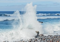 Coast - São Vicente - Madeira.jpg