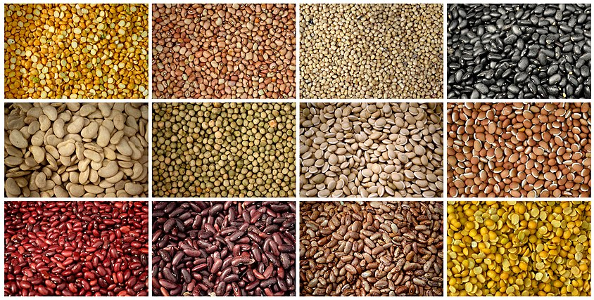 Pulses from Kolli Hills