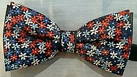Colourful Bow tie.jpg