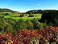 Colours - panoramio (16).jpg