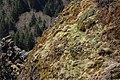 Columbia River Basalt Group 2036.JPG