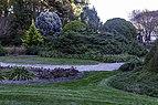 Conifer Garden 3 NBG LR.jpg
