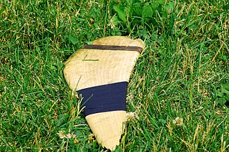 Hurley (stick) - A broken hurley lies upon the grass