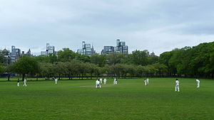 The Meadows (park) - Cricket in the Meadows