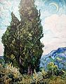 Cypresses (JH 1746) - My Dream.jpg