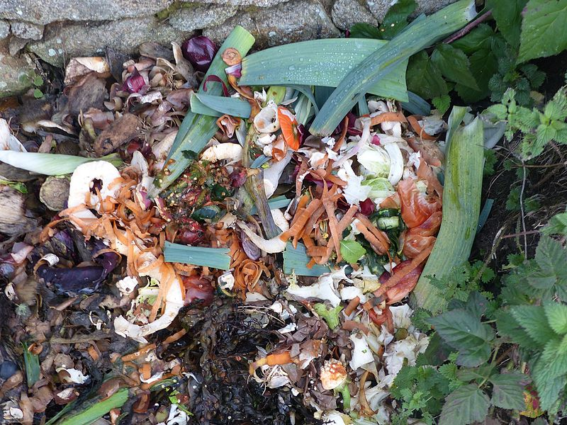 File:Déchets de cuisine pour compost.jpg
