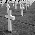 D-Day Cemetery in Normandie (2746213531).jpg