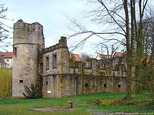 Daisbach castle ruins
