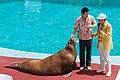 Dalian Liaoning China Laohutan-Ocean-Park-03a.jpg