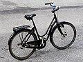 Danish bicycle female.jpg