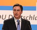 David McAllister CDU Parteitag 2014 by Olaf Kosinsky-8.jpg